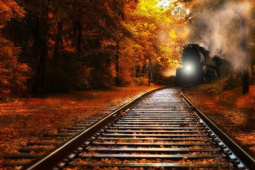 Autumn Train, Minnesota