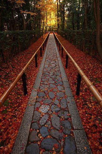 Stone Walkway, Kyoto, Japan