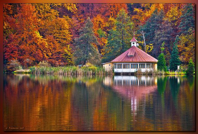 Autumn at Mogosa Lake - Maramures, Romania.