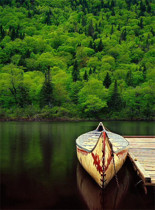 Summer Solitude, Maine