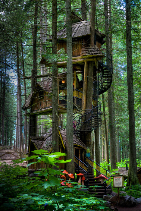 Three Story Tree House, British Columbia, Canada
