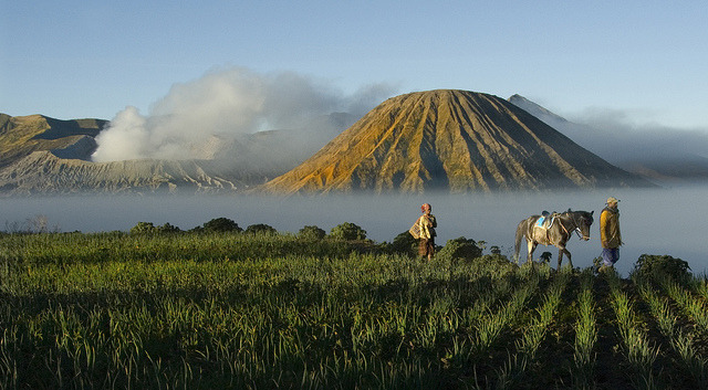 by ngchongkin on Flickr.Starting a new day in Mt. Bromo National Park, Indonesia.