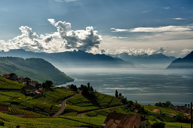 by DeGust on Flickr.Morning view of Lake Geneva fron Grandvaux - Canton du Vaud, Switzerland.