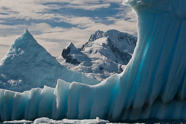 Frosted Window in Gerlache Strait of the Antarctic peninsula