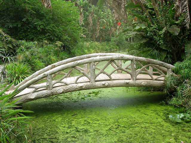 Bridge in the midlle of Jardin d'Essai in Algiers, Algeria