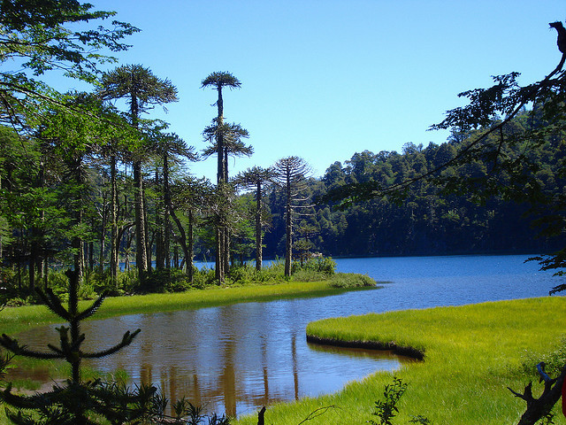 Lago Toro in Parque Nacional Huerquehue, Chile