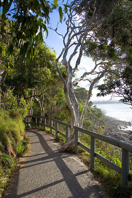 Walkway in Noosa National Park, Queensland, Australia