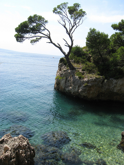 The Dalmatian coast near Brela, Croatia