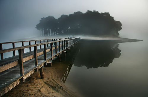 Fog Island, The Netherlands