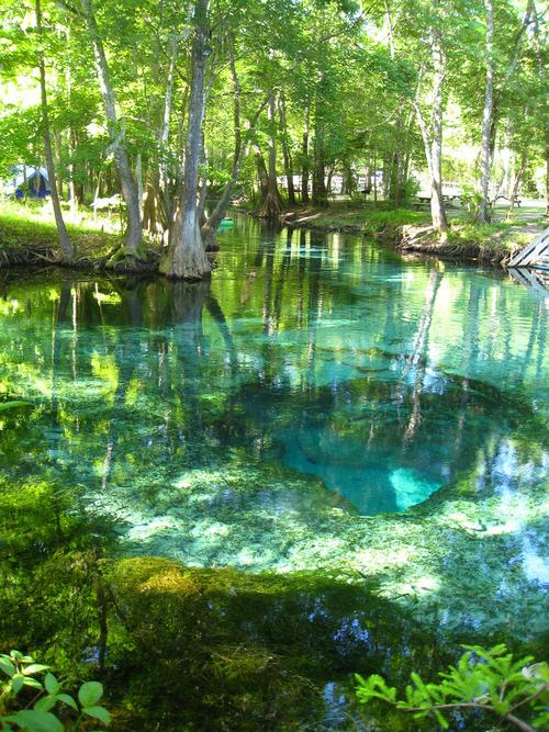 Turquoise Pool, Ginnie Springs, Florida