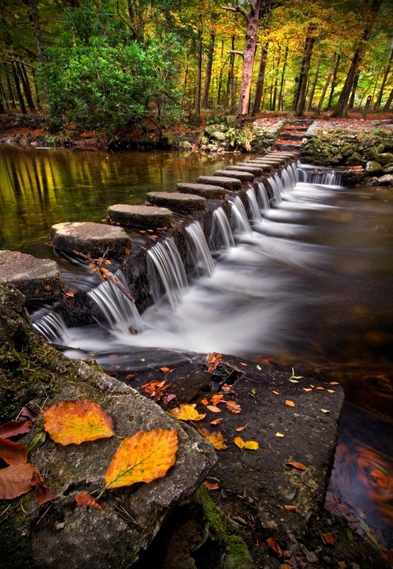 Stepping Stones, Shimna River, Tollymore Forest Park, Ireland