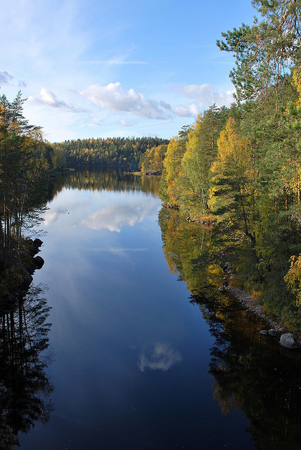 Calm waters in Repovesi National Park, Finland