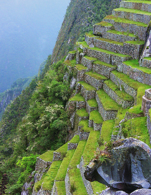 The inca terraces of Machu Picchu / Peru