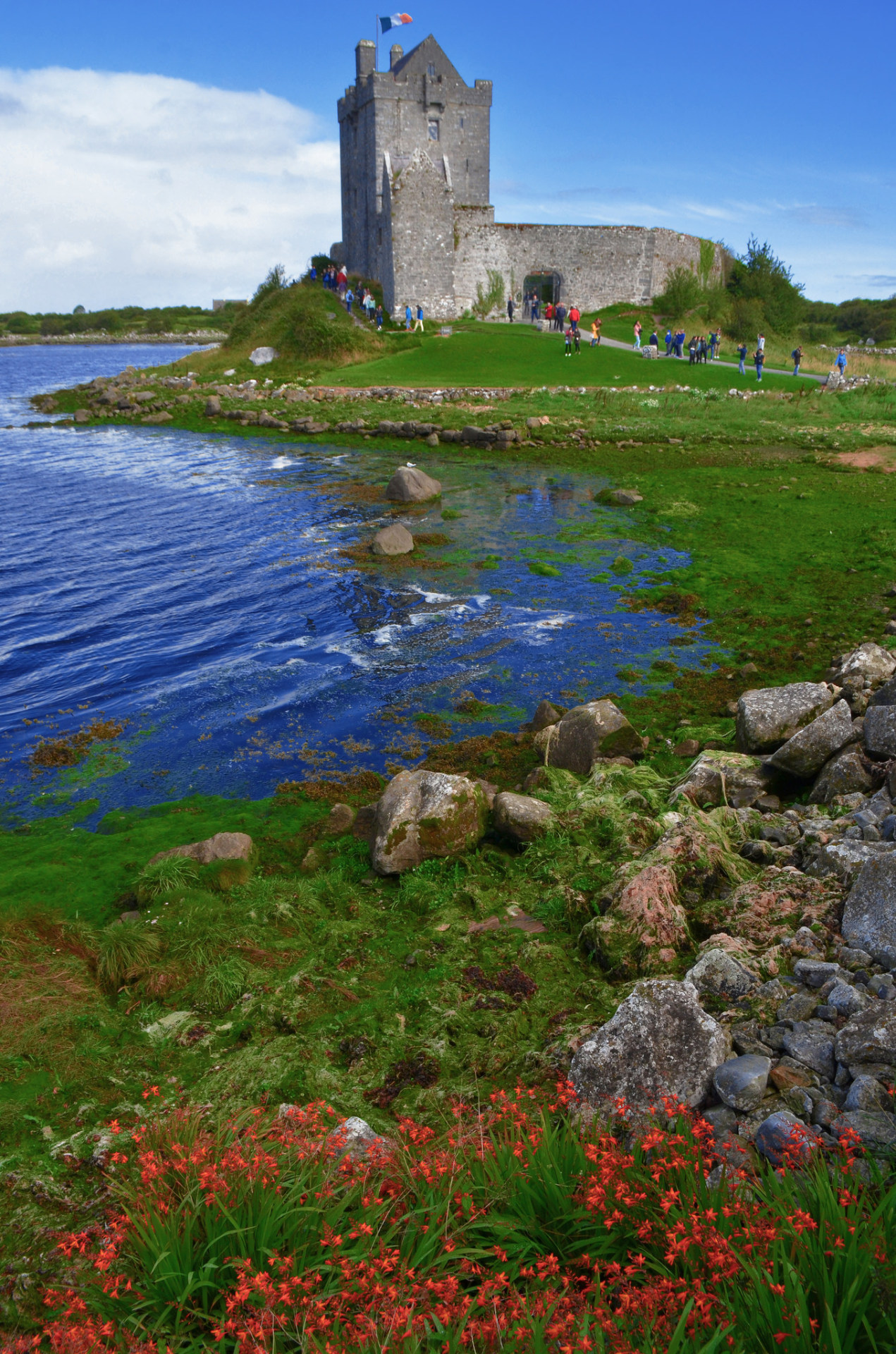 Dunguaire Castle, Galway / Ireland